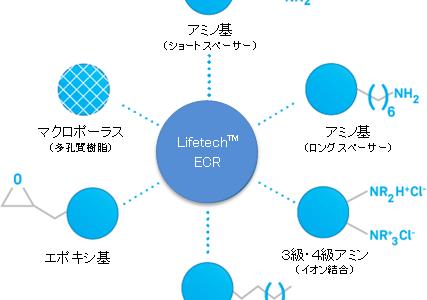 酵素固定用樹脂 Purolite® Lifetech™ ECR 製品群のラインアップを拡充しました