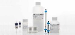 抗体医薬用アガロース樹脂
