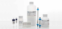 Praesto® Jetted A50 均一粒径タイプ 抗体医薬用アガロース樹脂のご紹介